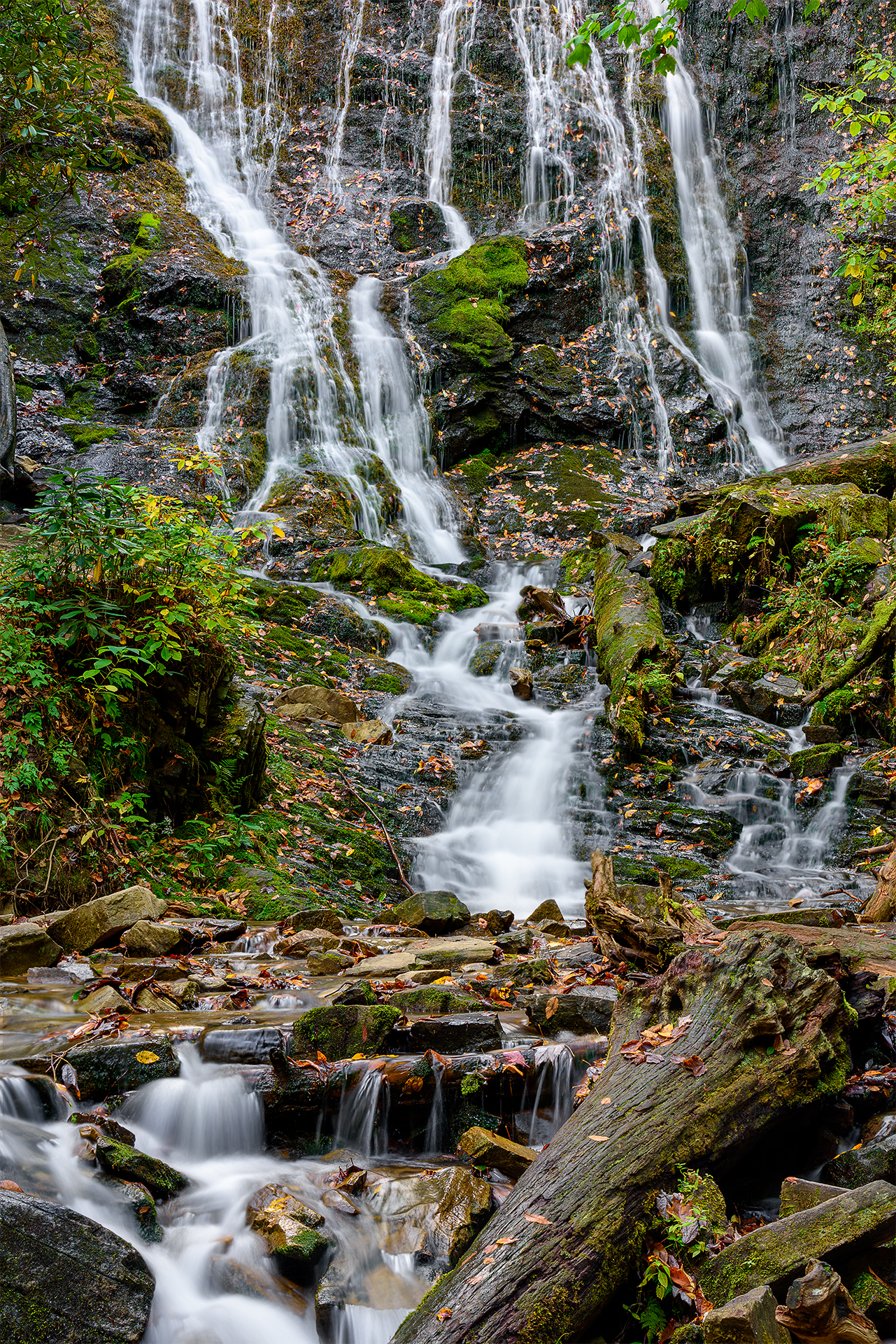 Details of Mingo Falls