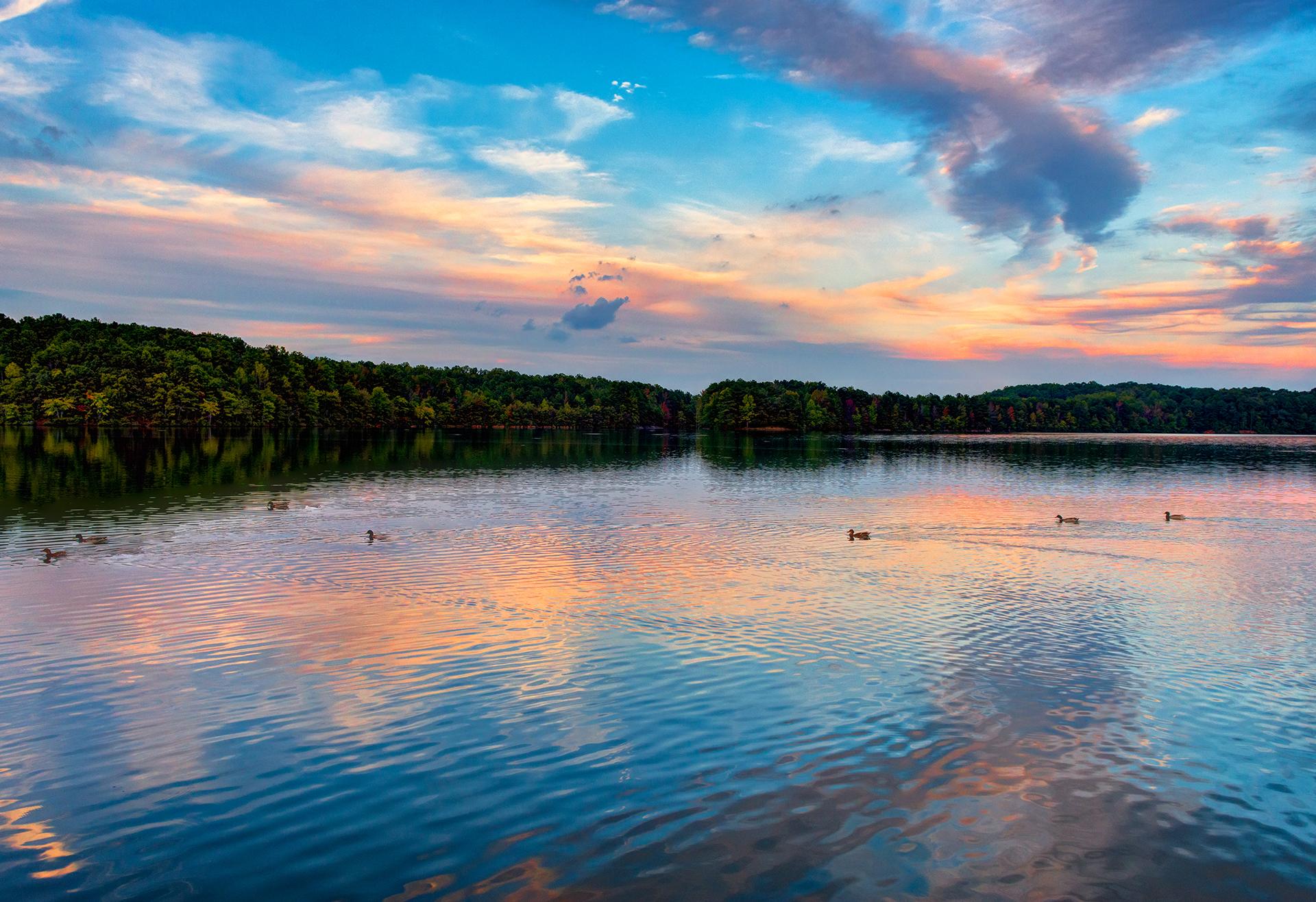 Sweetwater Creek State Park - Sweet Duck Water