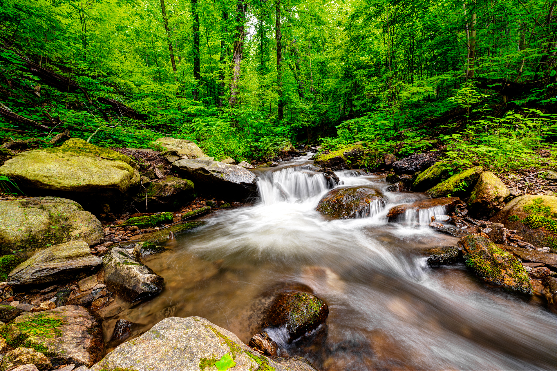 amicalola-falls-trail-hiking-creek-waterfall-2