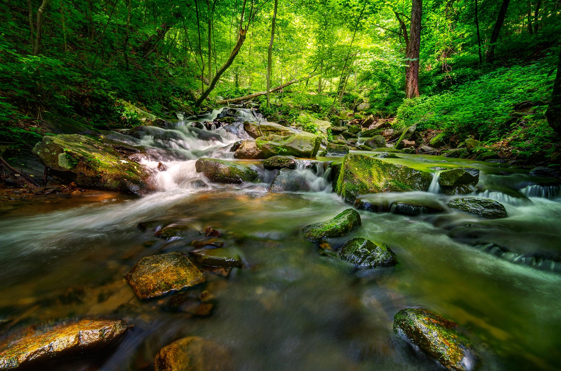 amicalola-falls-trail-hiking-creek-waterfall-5