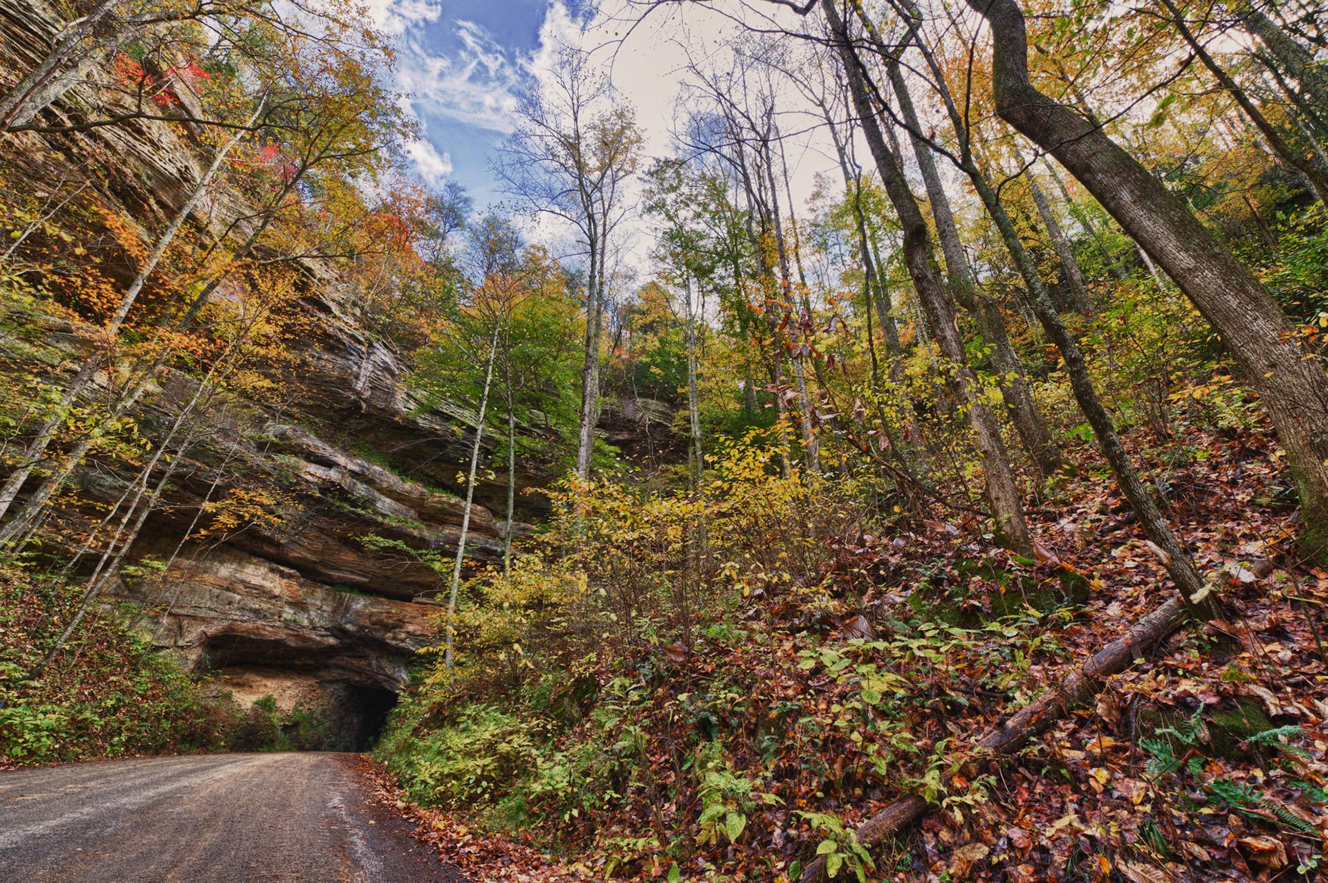 natural bridge state park 10