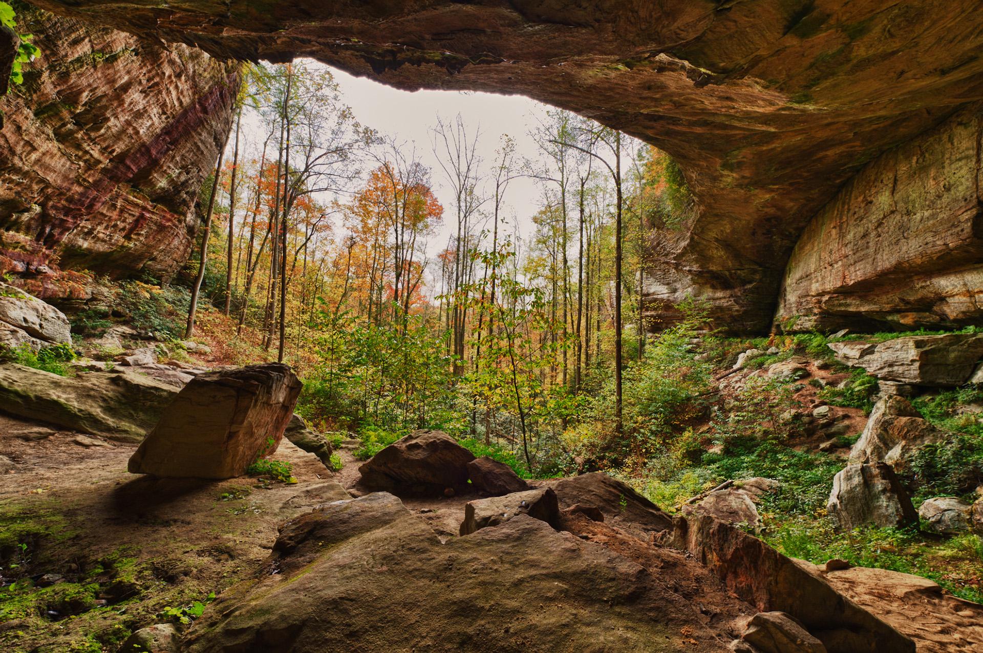 natural bridge state park 12