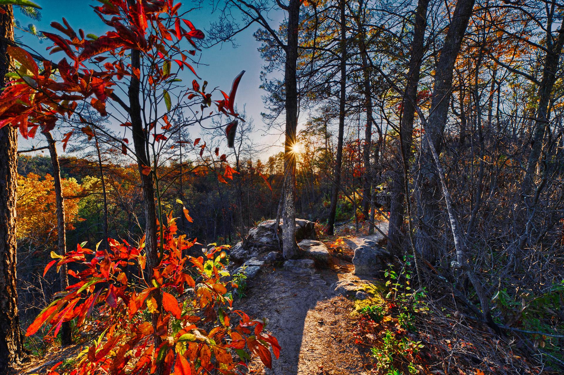 natural bridge state park 4