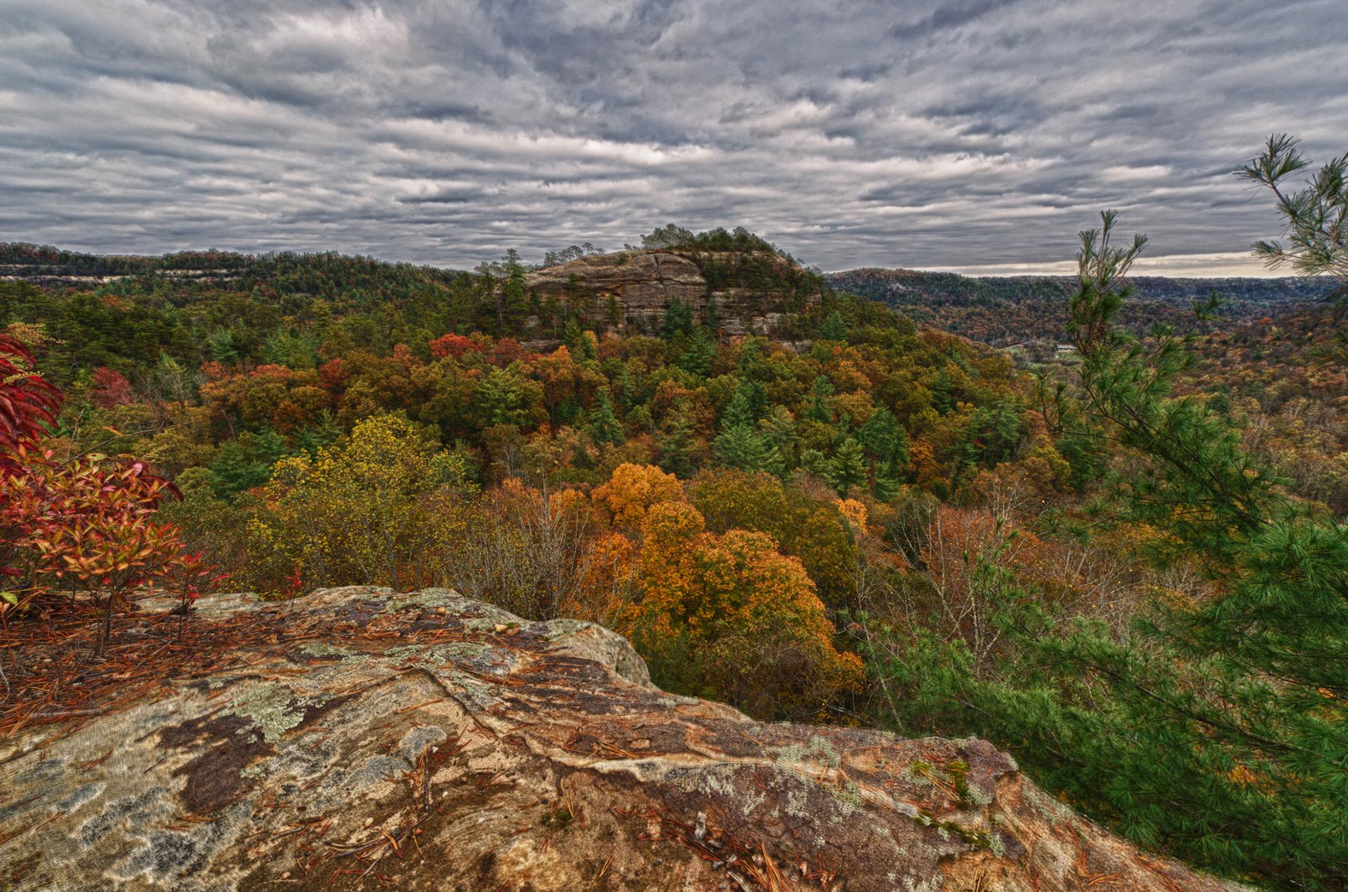 natural bridge state park 5