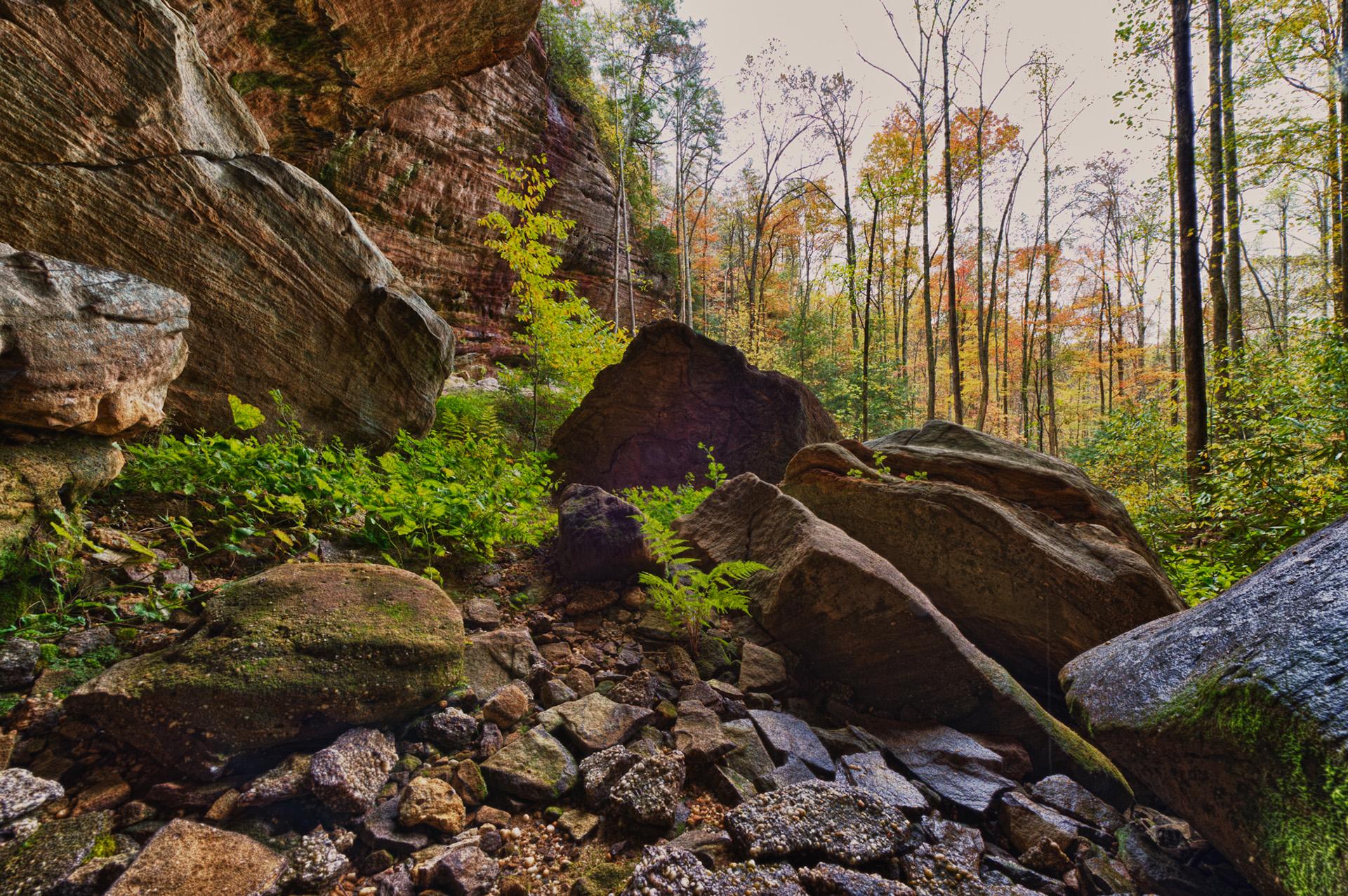 natural bridge state park 6