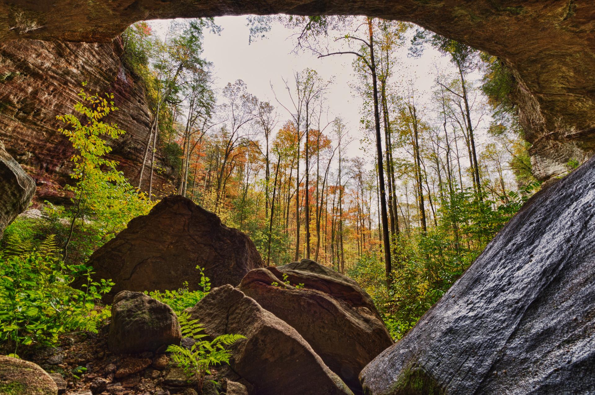 natural bridge state park 7