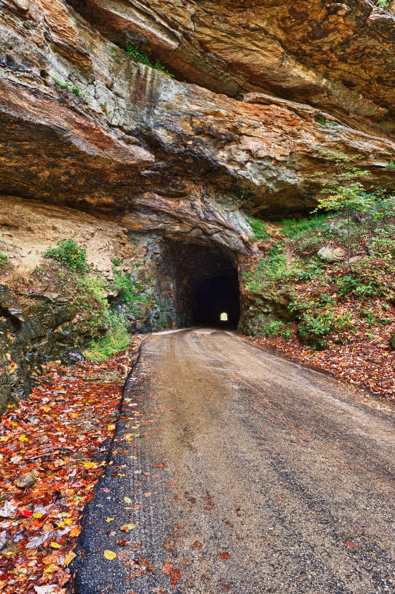 natural bridge state park 8
