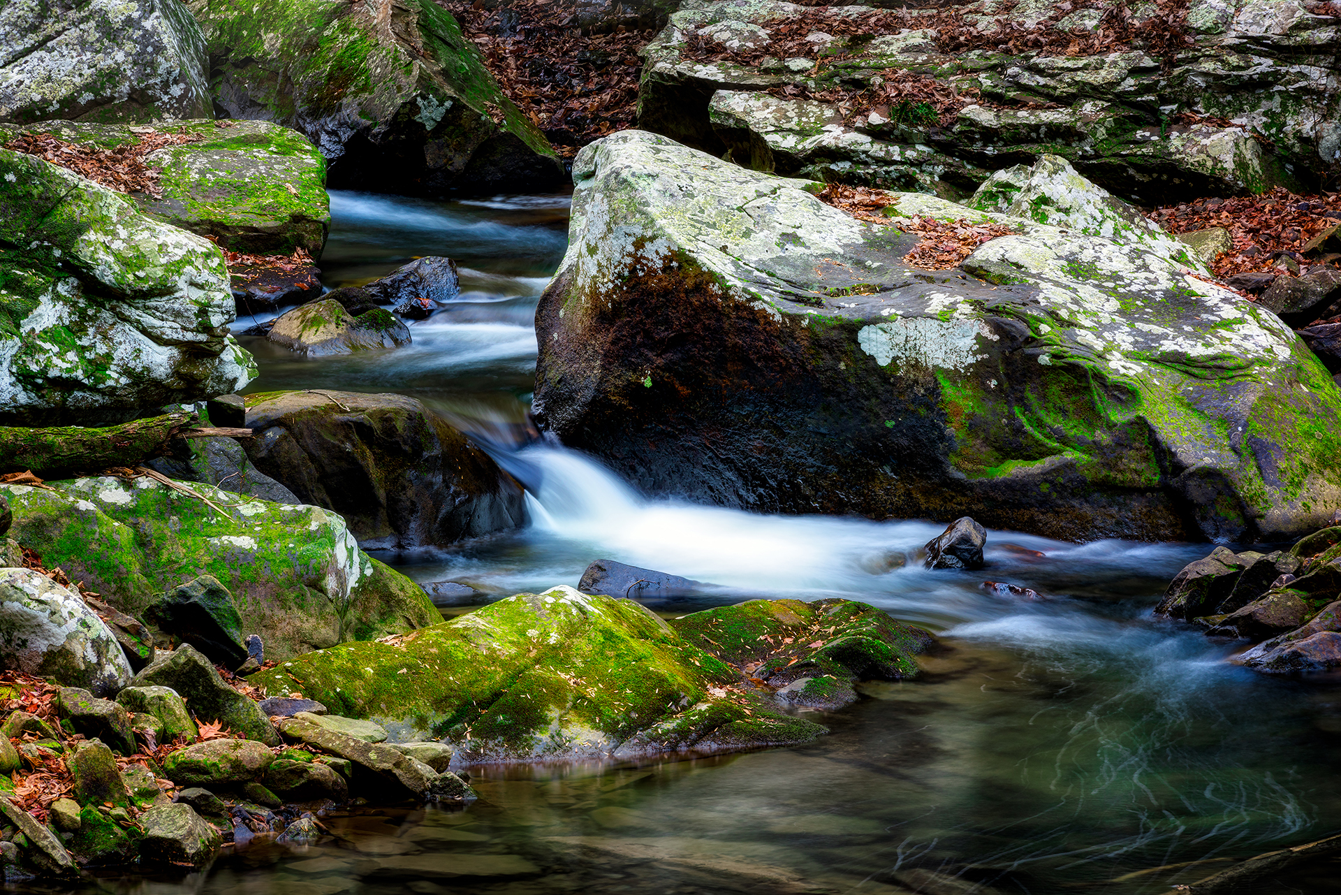 Cloudland Canyon - Mossy Falls