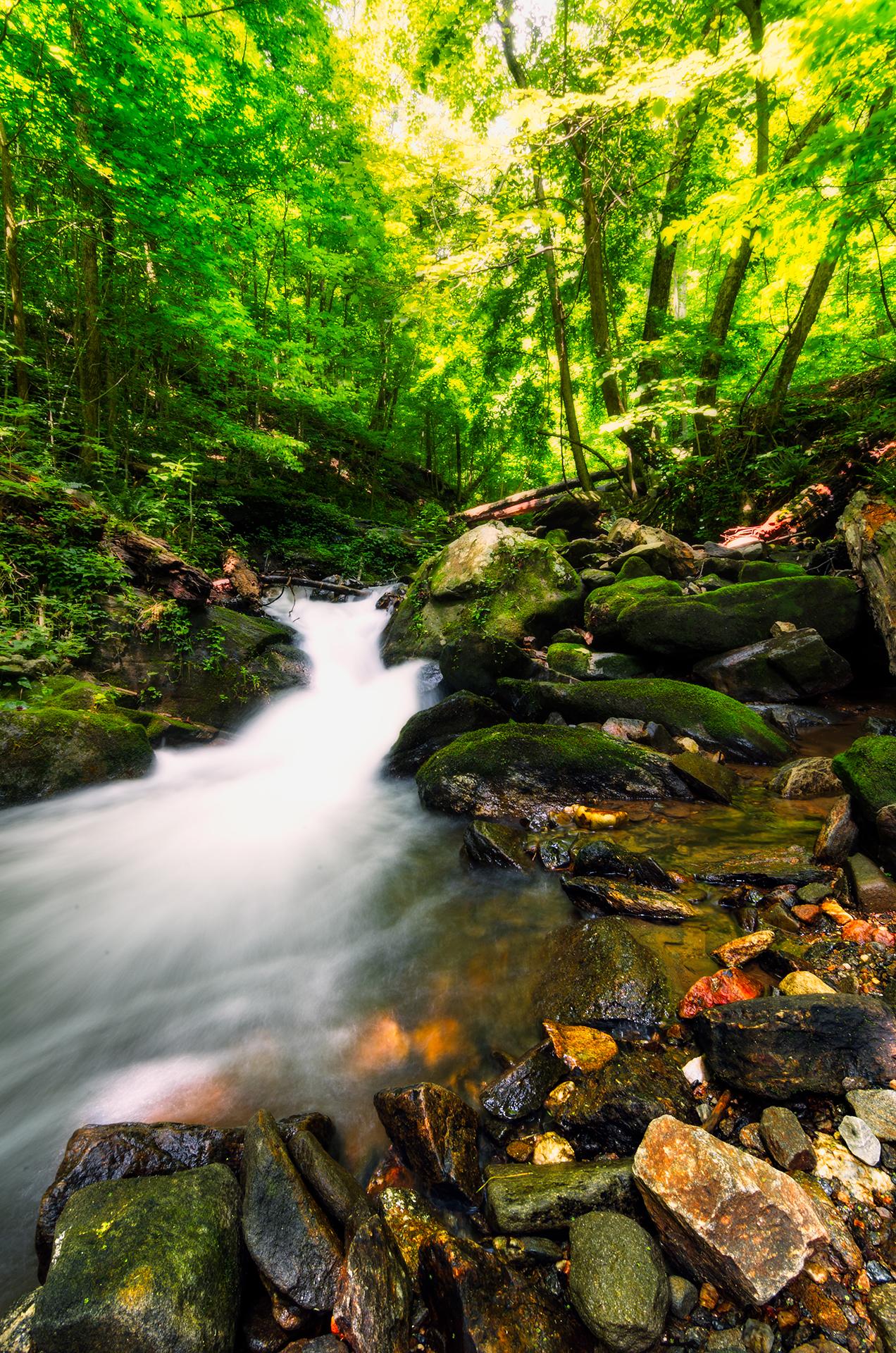 amicalola-falls-trail-hiking-creek-waterfall-4