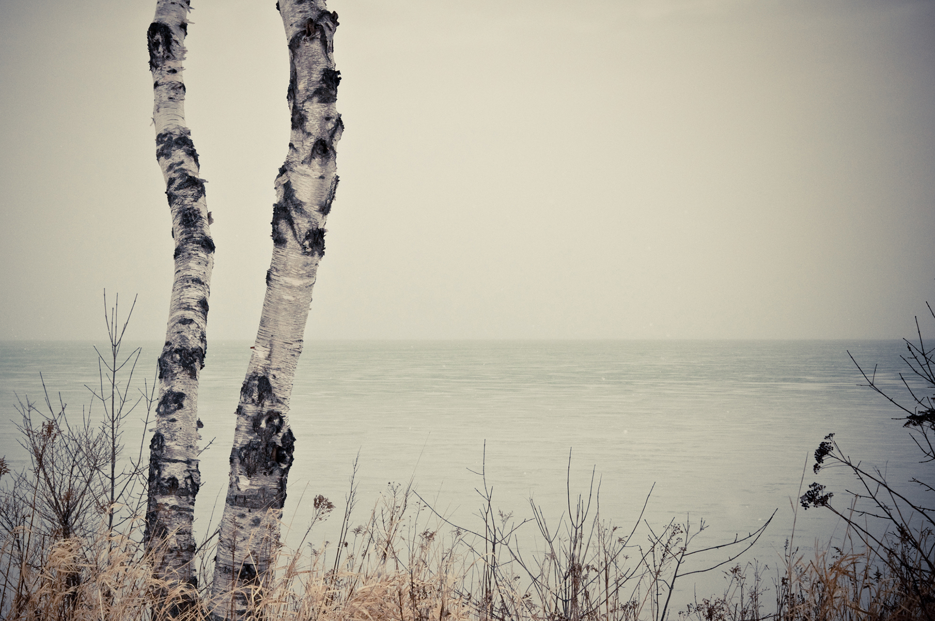 Lake Michigan - This is the song of Baby Birch